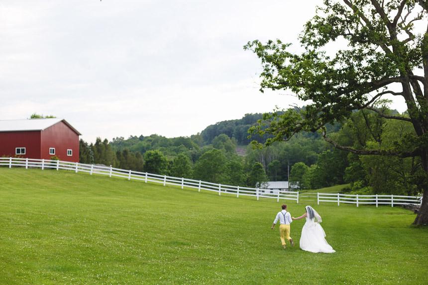 mollie & brad's friedman farms wedding 101