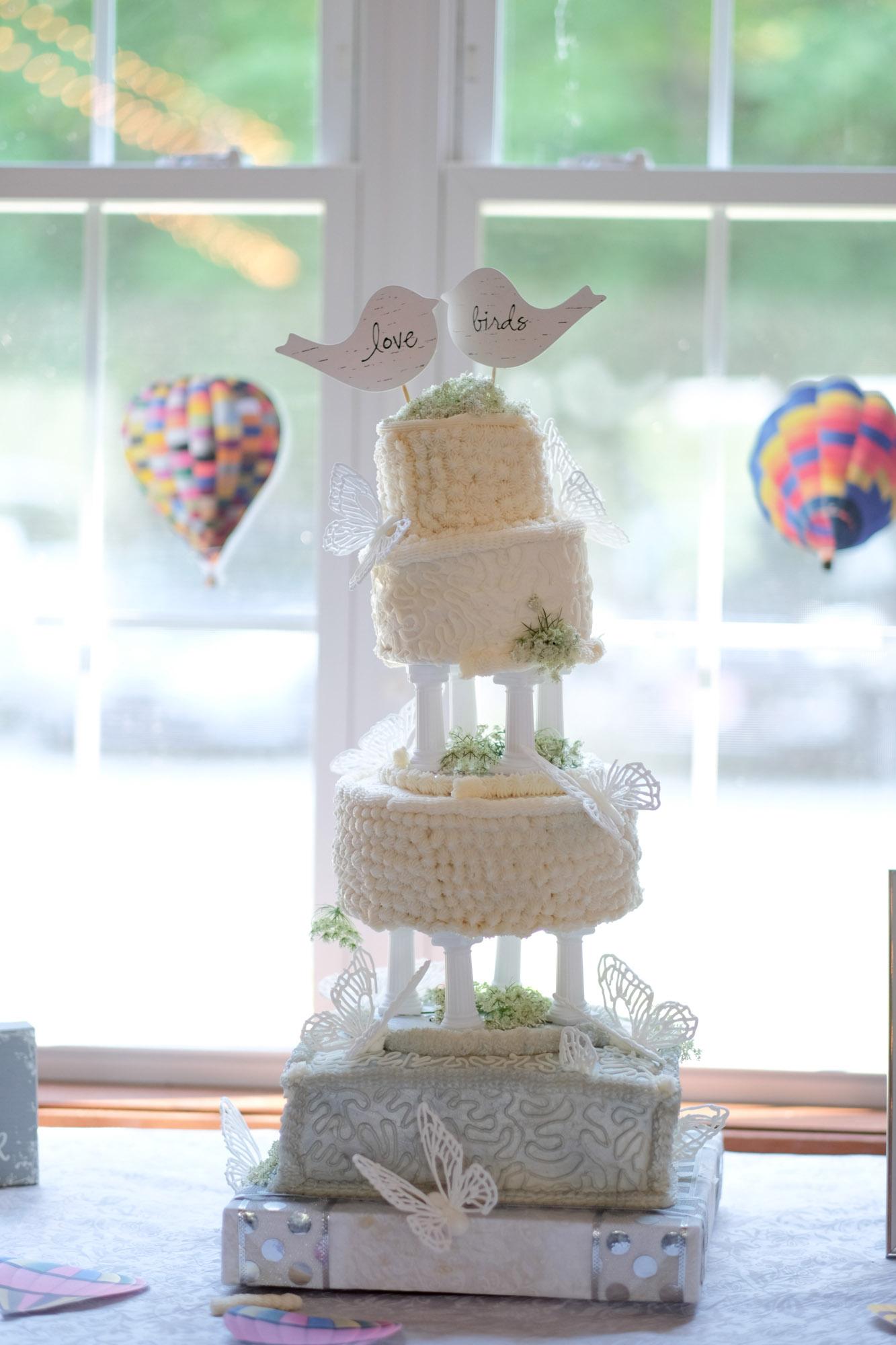 Shawn & Danielle Hot Air Balloon Wedding 39